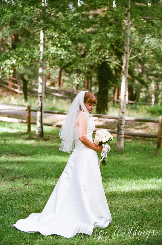 Red Setter Greer Arizona Minson Wedding Photo rustic mounitan kodak pentax645